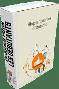 ebook sur blogging