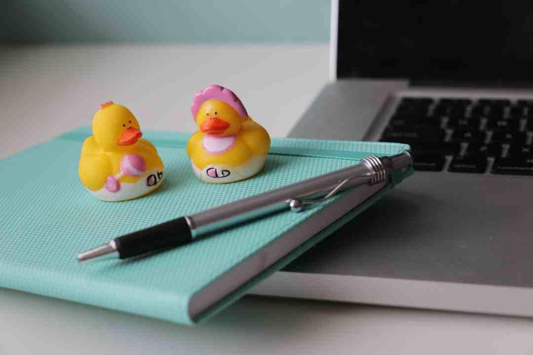 canard sur cahier entrepreneur